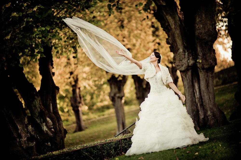 Billeder ved bryllup